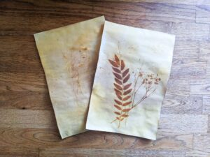Print your own images using turmeric and sunlight