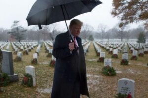 Dems Introduce Bill to Bar'Twice Impeached' Presidents From Arlington Cemetery Burial-#16 by Pete2011-Politics