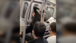 VIDEOS of new attacks on Asians in New York City shock audiences as bystanders seen idly watching brutal assaults — RT USA News