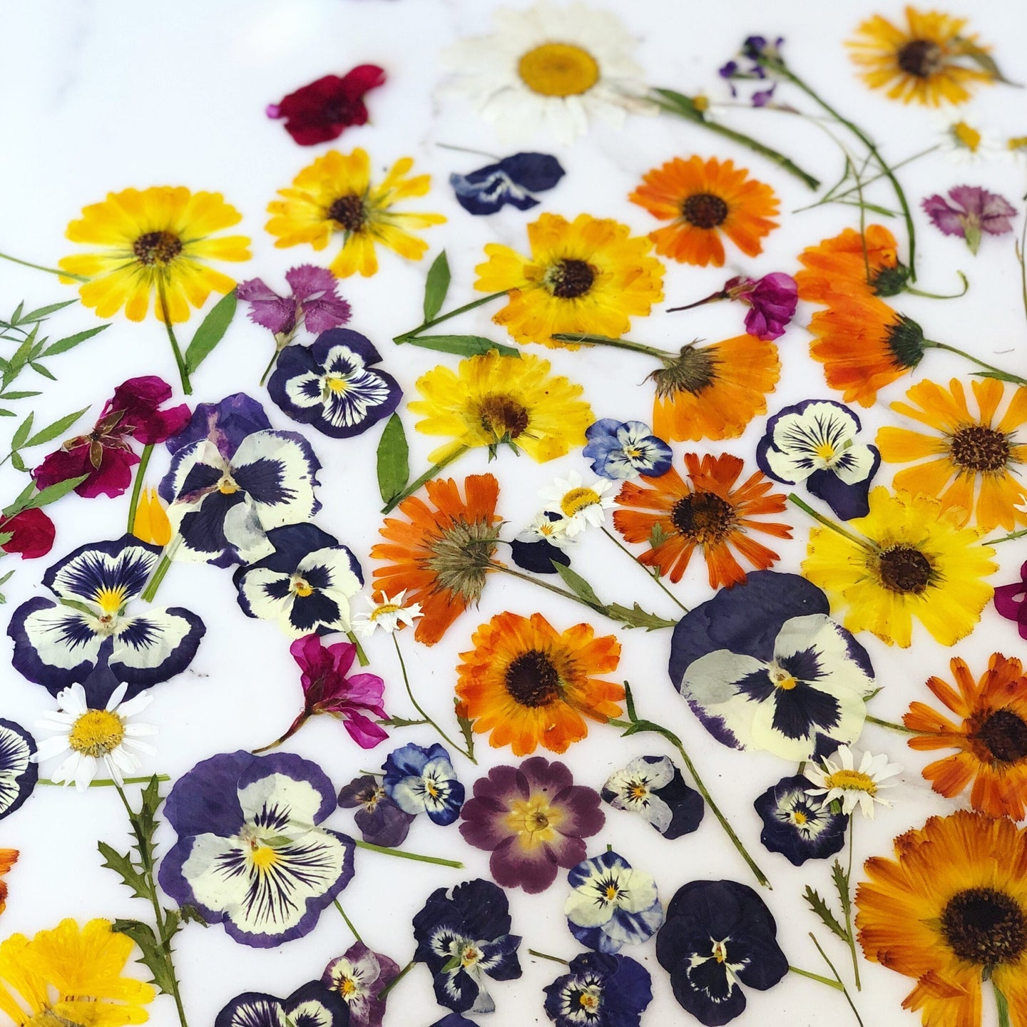 Beginner's guide to cooking with edible flowers