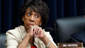 Maxine Waters urges Minnesota anti-police crowd to'stay on the street' if Chauvin acquitted in Floyd case