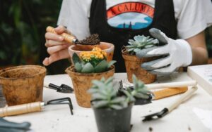 Best Gardening Gloves to Keep Your Hands Protected