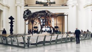 T. rex dominated the Earth for more than 125,000 generations