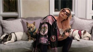 Lady Gaga Dognappers Arrested in Los Angeles