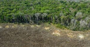 Jair Bolsonaro is asking for billions to stop Amazon deforestation