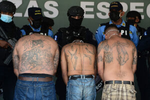 MS-13, other gang members exploit migrant wave to cross into US