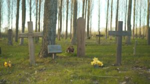 Woodland burials offer an eco-friendly death